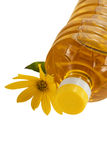 Bottle of sunflower oil and flower isolated Royalty Free Stock Images