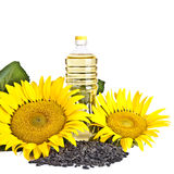 Bottle of sunflower oil with flower and seed Stock Image