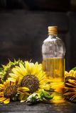 Bottle of Sunflower oil with fresh blooming over dark wooden background Stock Photography