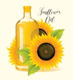 Bottle of sunflower oil with sunflowers and leaves. Bottle of sunflower oil with ripe sunflowers and green leaves. Vector illustration or banner with handwritten Stock Images