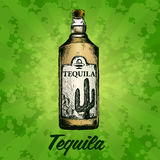 Bottle of tequila with lime and glass. painted by hand Royalty Free Stock Photography