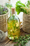 Bottle of thyme essential oil or infusion and herbs Royalty Free Stock Photography