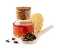 A bottle of tinctures on dead bees and dead bees in a wooden spoon. Treatment with dead bees. Dead bees do not buzz but. Heal royalty free stock image