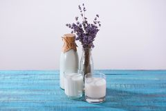 Bottle and two glasses of fresh milk with lavender on turquoise. Wooden tabletop stock photo