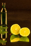 The bottle and the two halves of lime Stock Photography