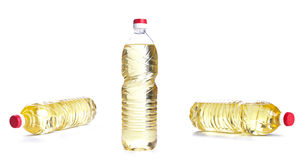 Bottle of vegetable oil for cooking isolated Royalty Free Stock Photo
