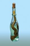 Bottle of  viper liquor. It is an alcoholic drink containing a picked snake. The liquor is said to offer many benefits from skin improvement to longevity. The Royalty Free Stock Image