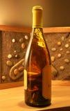 bottle vit wine Royaltyfria Bilder