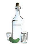 Bottle with vodka and cucumber vector illustration Stock Image