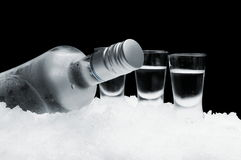 Bottle of vodka with glasses standing on ice on black background Stock Images