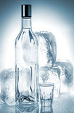 Bottle of vodka and ice cubes Stock Image
