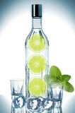 Bottle of vodka with lime, mint and ice cubes. Close-up Stock Image