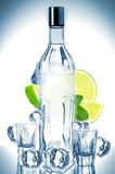 Bottle of vodka with lime, mint and ice cubes Stock Images