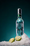 Bottle of vodka and  lime slice Royalty Free Stock Photos