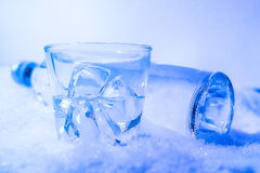 Bottle of vodka in the snow Royalty Free Stock Photography