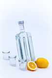 Bottle of vodka in the snow Stock Images