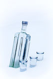 Bottle of vodka in the snow Stock Image