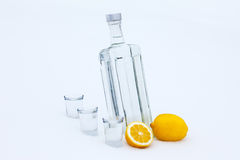 Bottle of vodka in the snow Royalty Free Stock Images