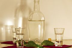 A bottle of vodka and three glasses. royalty free stock photos