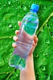 Bottle water Stock Image