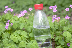 Bottle of water outdoors Stock Images