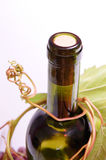 Bottle of white wine. With vine Stock Images