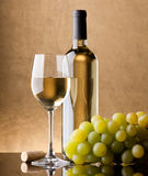 A bottle of white wine, glass Royalty Free Stock Image