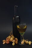 Bottle of white wine and grape bunches Stock Image