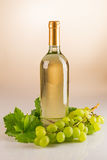 Bottle of white wine with grapes and vine leaves Royalty Free Stock Photography
