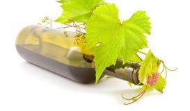 Bottle wine Royalty Free Stock Images