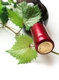 Bottle of wine Stock Image