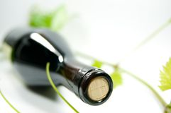 Bottle of wine. With grape vine leafs Royalty Free Stock Image