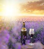 Bottle of wine. Royalty Free Stock Image