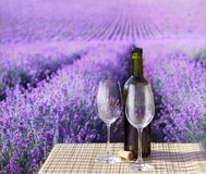 Bottle of wine. Stock Images