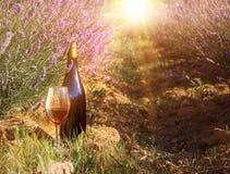 Bottle of wine against lavender landscape Royalty Free Stock Photos