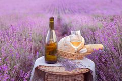 Bottle of wine against lavender Royalty Free Stock Photos