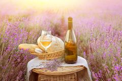 Bottle of wine against lavender Royalty Free Stock Photo