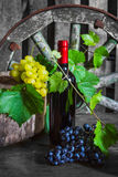 A bottle of wine on the background of the vine Stock Photography