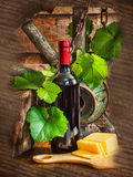 A bottle of wine on the background of the vine Royalty Free Stock Photography