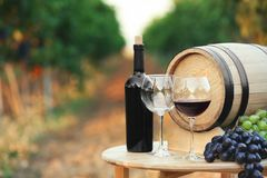 Bottle of wine, barrel and glasses on wooden table. In vineyard stock image