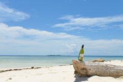 Bottle of wine on beach. Single empty bottle of wine stands on lump on a lost beach, shot on Mataking island, Semporna, Sabah, Malaysia stock photo