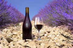 Bottle of wine composition Stock Photography