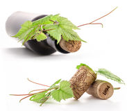 Bottle of wine, cork and leaves of the vine Royalty Free Stock Photo