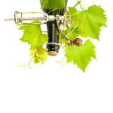 Bottle of wine with corkscrew and fresh green vine leaves Stock Photos