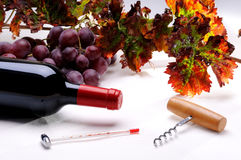 Bottle of wine with corkscrew Stock Image