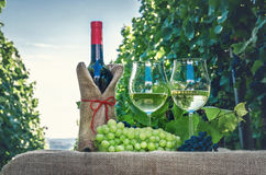 Bottle of wine with filled glasses and grapes on the background Stock Images