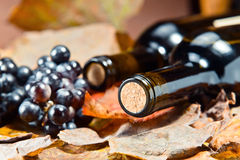 Bottle with wine Royalty Free Stock Image