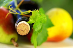 Bottle of wine and fruit Royalty Free Stock Image