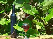 Bottle and wine glass against a vineyard Royalty Free Stock Photography