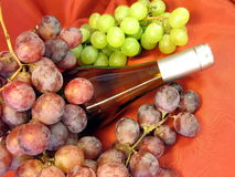 Bottle of wine and grape royalty free stock photography